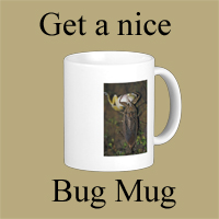 Get Your Bug Mug Button