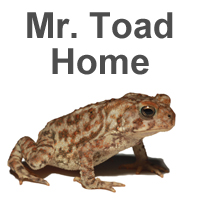 back to Mister-toad.com home